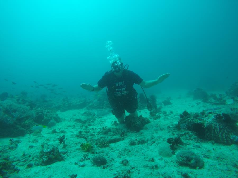Diving in Boracay, Phl