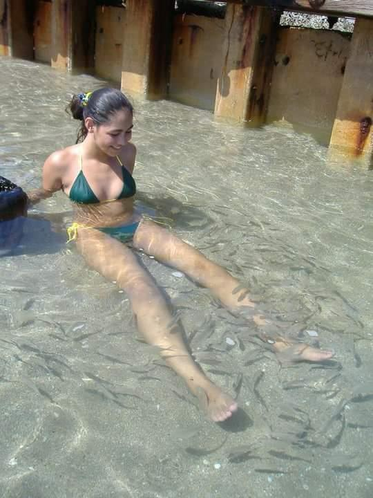 Swimming with the fish