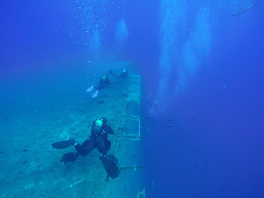 Divers Zenobia