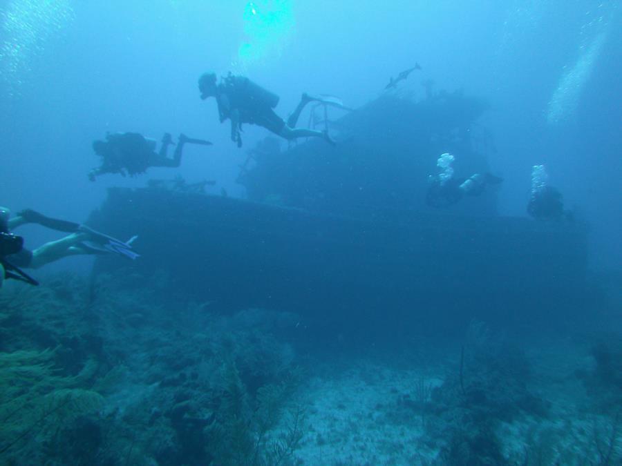 Dive Group @ Papa Docs