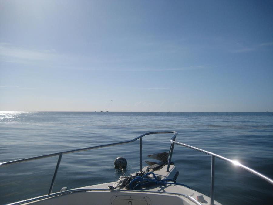 Ocean Front