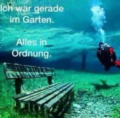 Diving in the garden