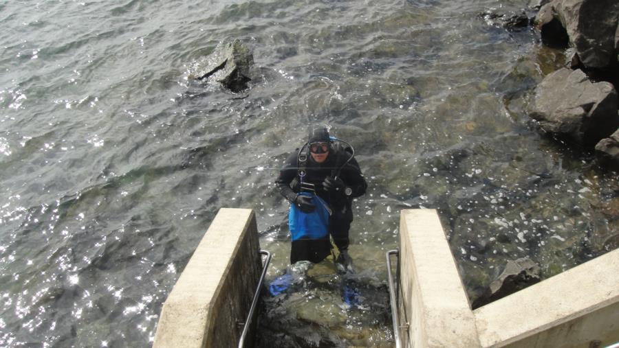 Crabbing Garibaldi