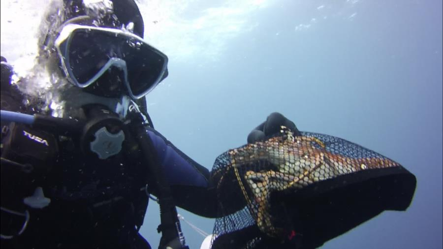 Lobster diving: West Palm 2-8-20