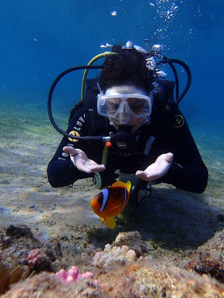 Red Sea - I found Nemo (in Egypt)