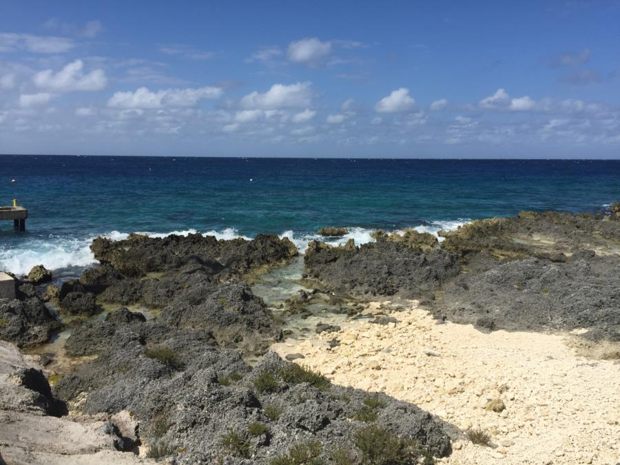 Dive Tech Grand Cayman