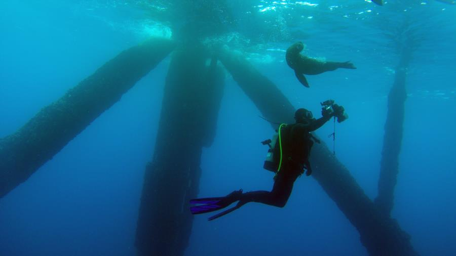 SCAL Oil Rig Dive #3