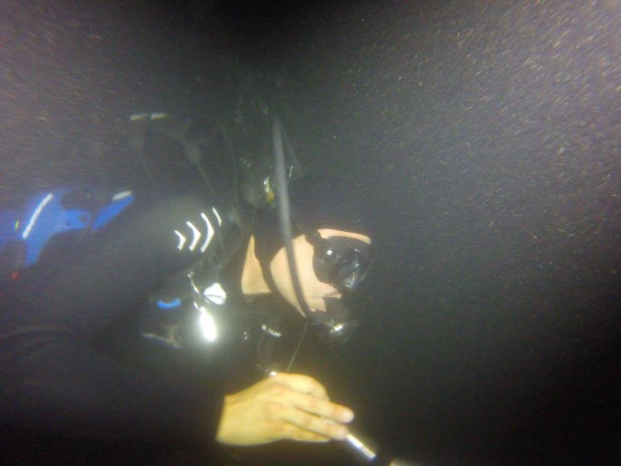 Night Dive Comal