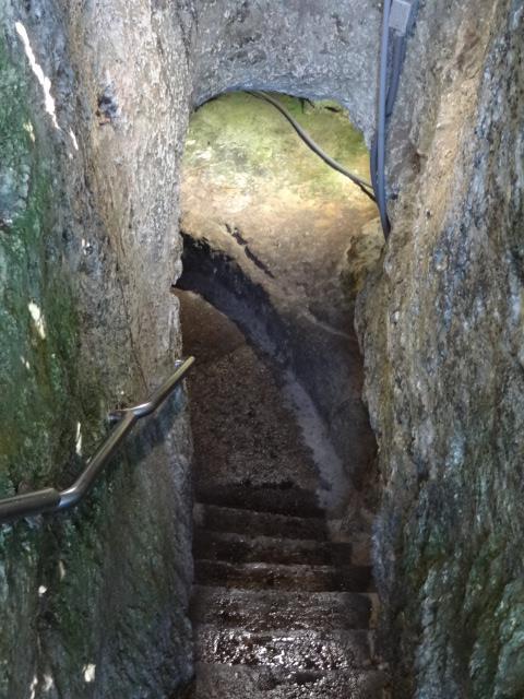 Devil's Den Spring Entrance