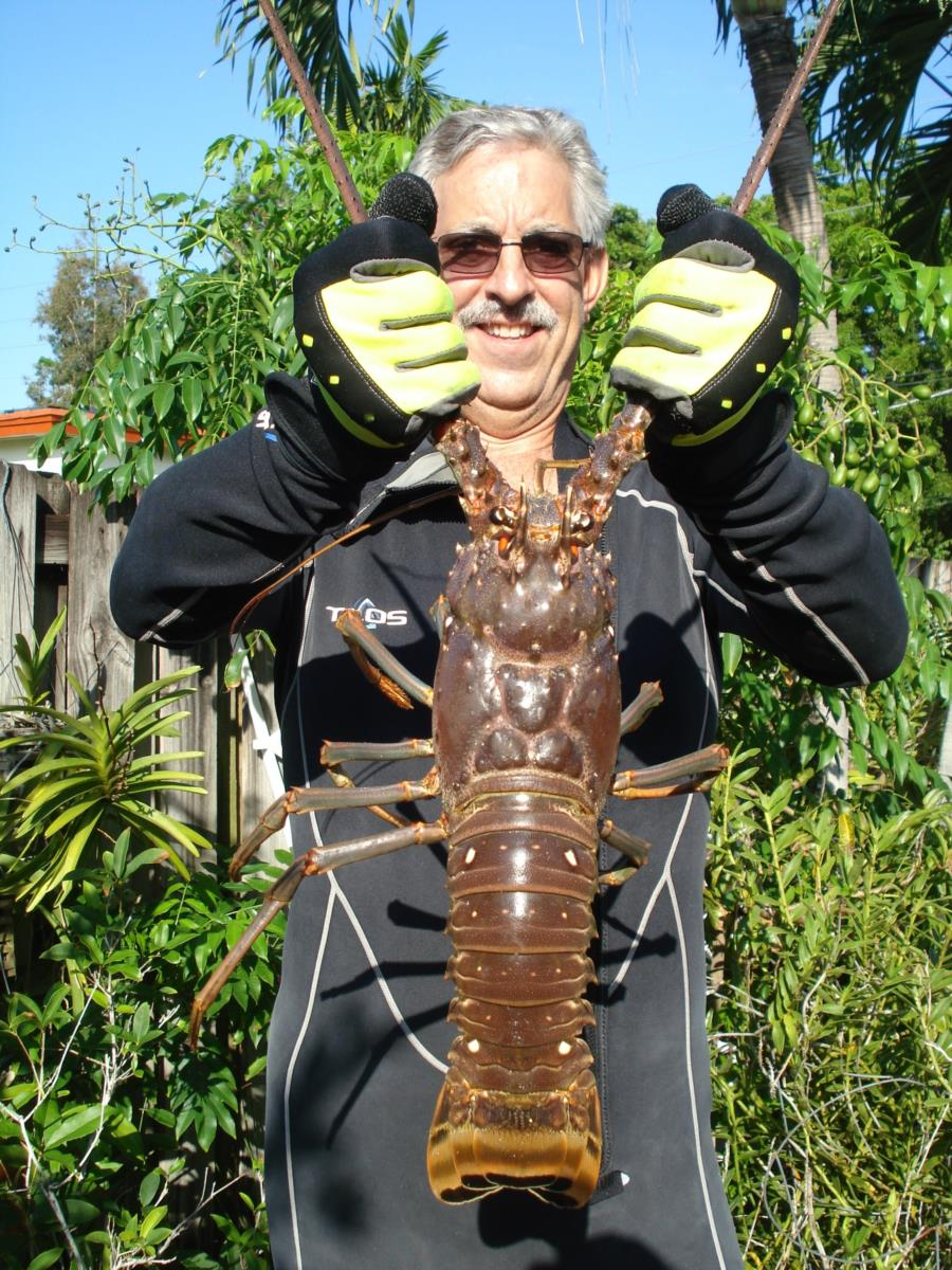Big Daddy Lobster