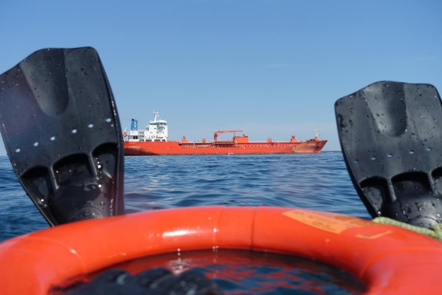 Playing in Lake Ontario-Tiller wreck