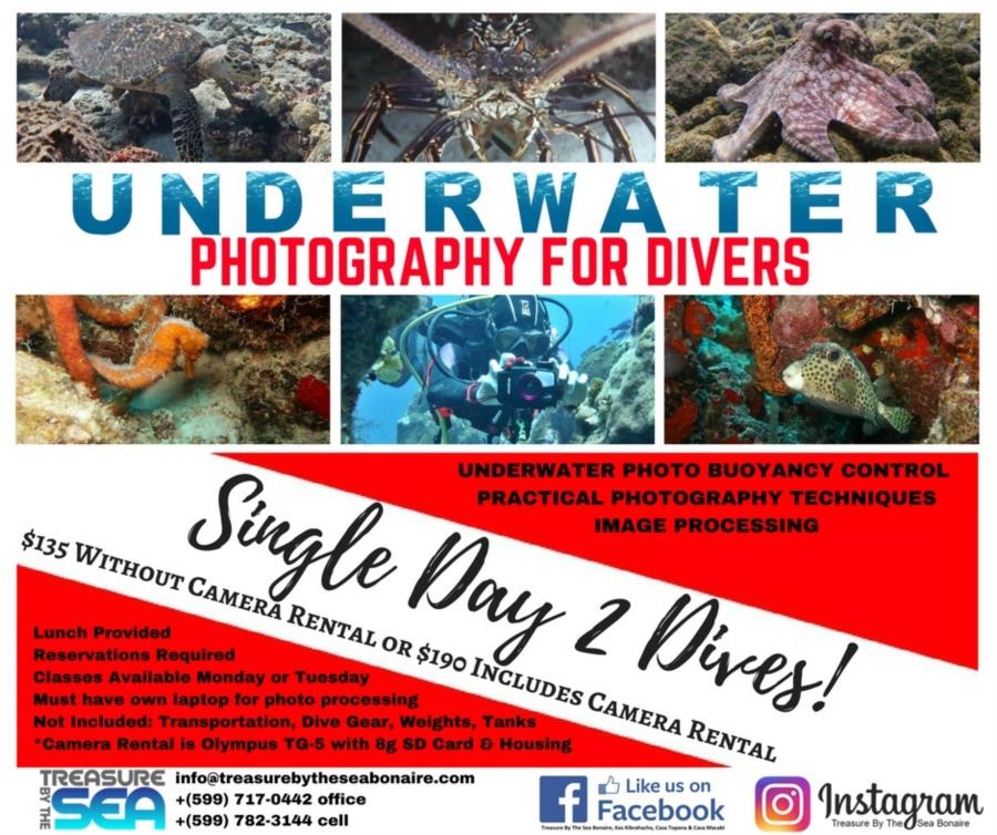 Underwater Photography for Divers