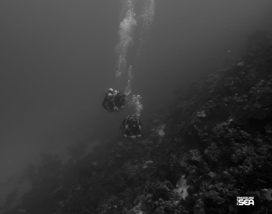 Diving at Yellow Sub