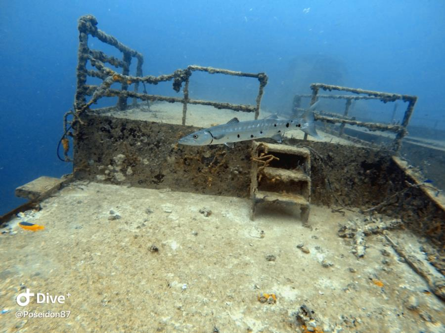 Lost Reef Advenature's (Key West, FL)