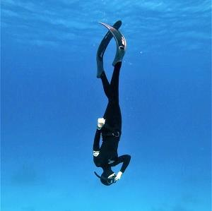 FreedivingAcademy's Profile Photo