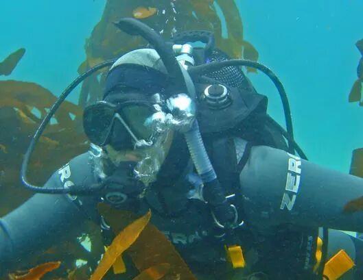 Peeping thru the Kelp