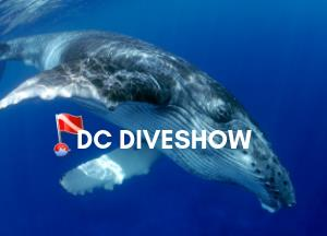 usdiveshows's Profile Photo