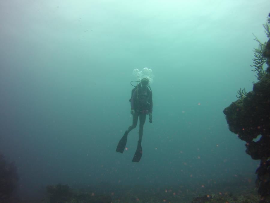 scuba works dive