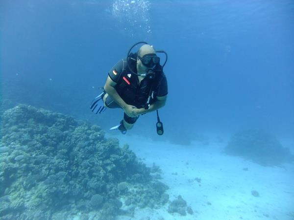 Q8Diver's Profile Photo