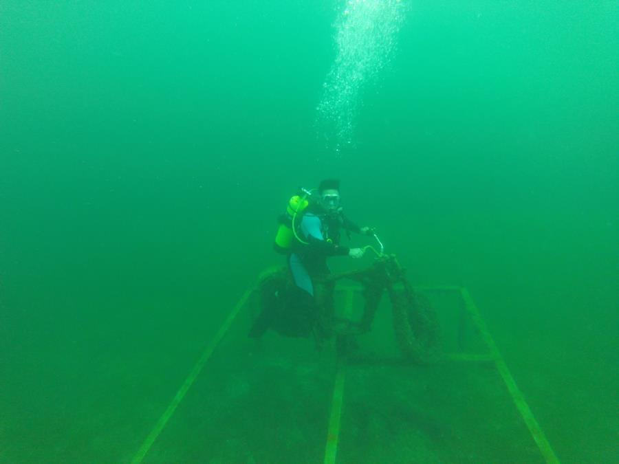 Underwater Cruisin'