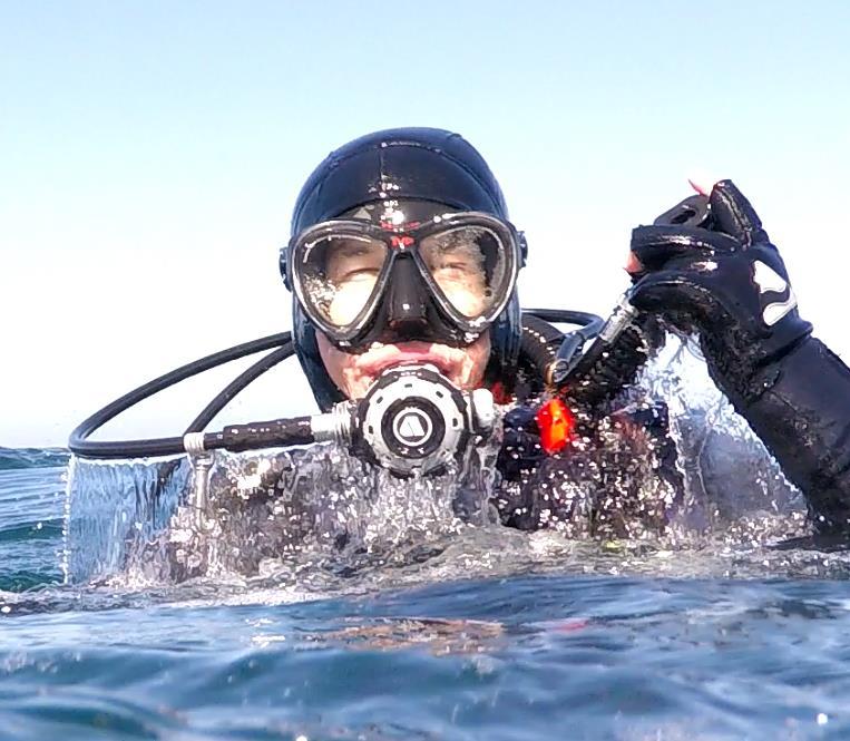 Monterey Bay Surfacing