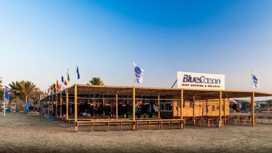 blueocean-eg's Profile Photo
