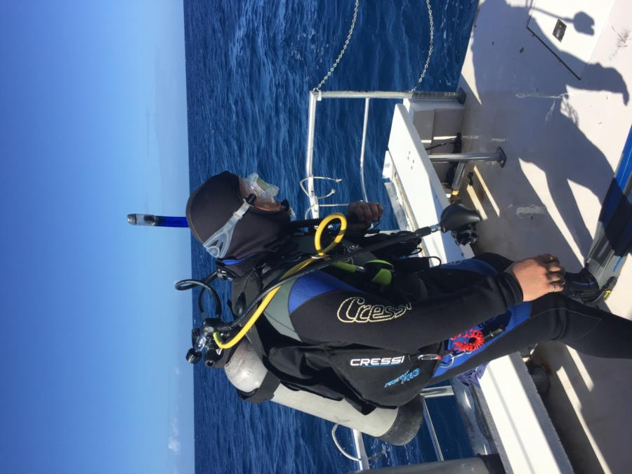 Diving in PR