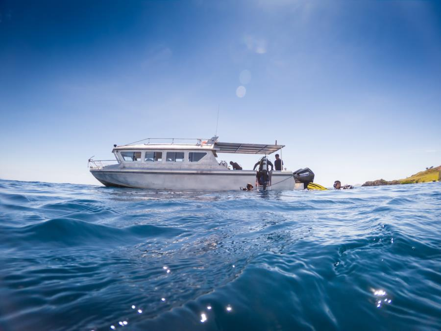OrcaNation Dive Boat