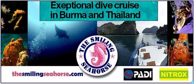 Exceptional dive cruises in Burma!
