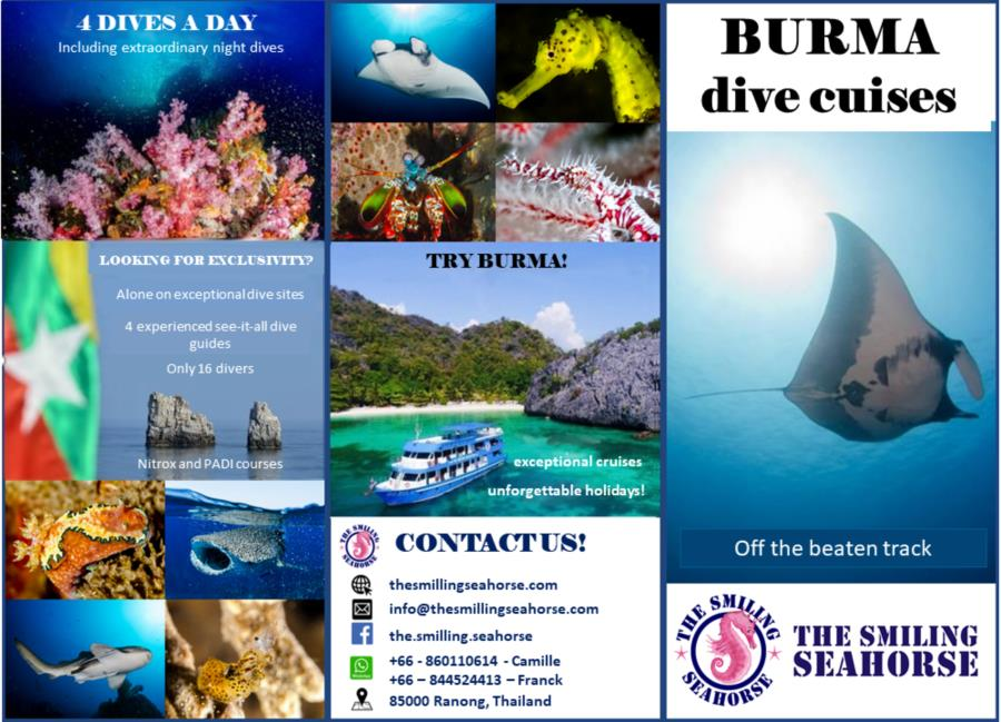 Try Burma diving!