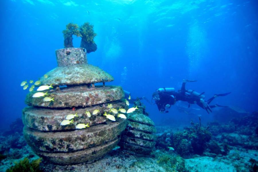 Playa Aqua Museo Da Bomb