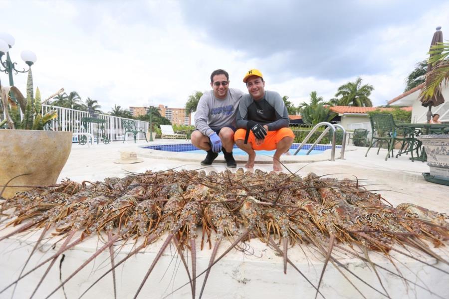 Lobster army