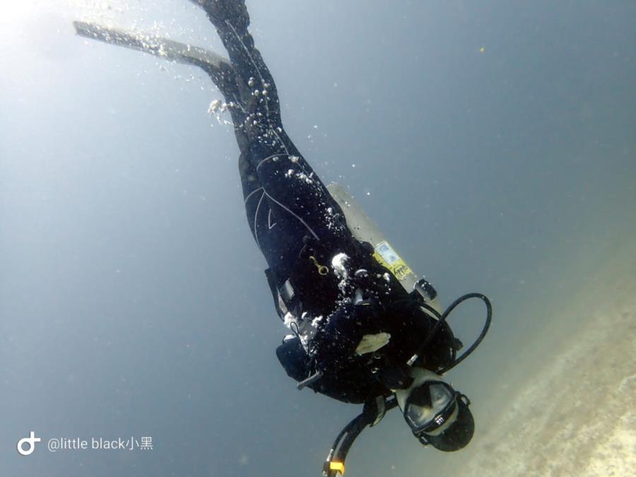 DiverA's Profile Photo