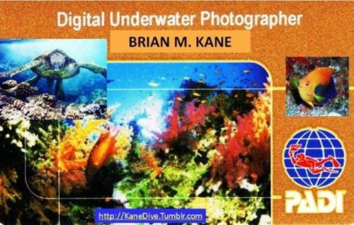 KaneDive Underwater Photography