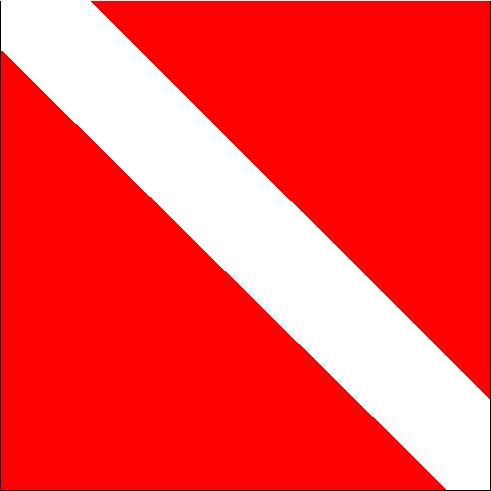 Skin and Scuba Diver Down Flag in North Carolina