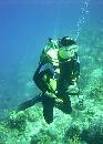 Anyone Diving in Muscat, Oman June 1-3??