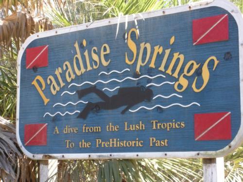 Paradise Spings, Ocala, Fl 26 Feb 2010
