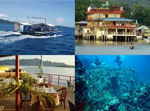 Apo Reef and Wreck Diving in the Philippines