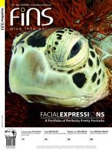 FiNs Magazine, gateway to dive Southeast Asia