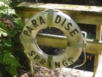 Paradise Springs 1/24