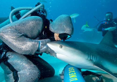 Cristina Zenato - Common Sense Shark Diving