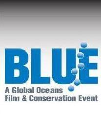 Post BLUE Film Festival News: new shark species in the Philippines