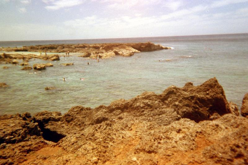 Shark's Cove - south side of cove