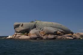 Turtle Rocks - Turtle Rocks