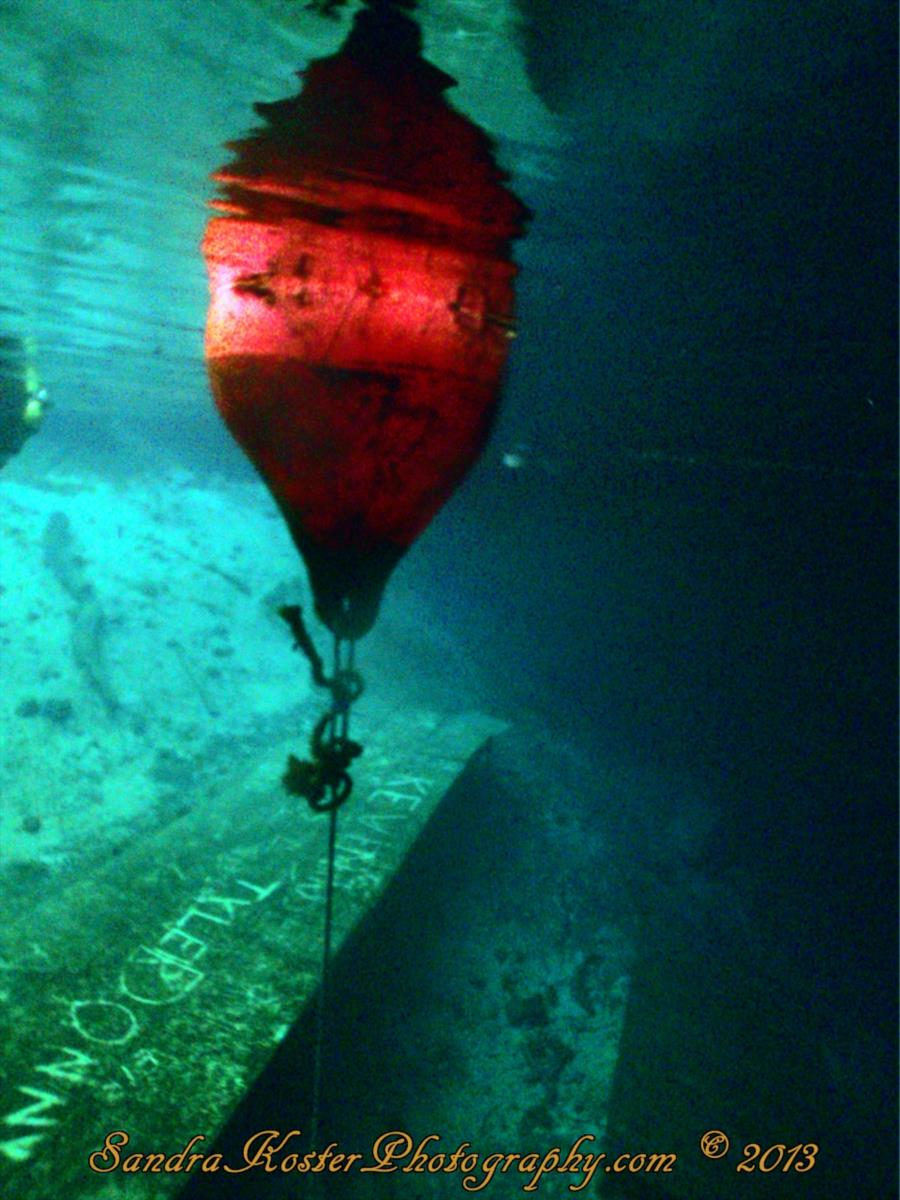 Blue Grotto Dive Resort - Buoy, looking down at the entry platform
