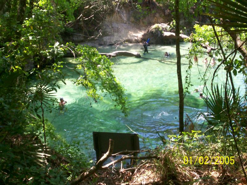 Blue Springs State Park - Blue Spring