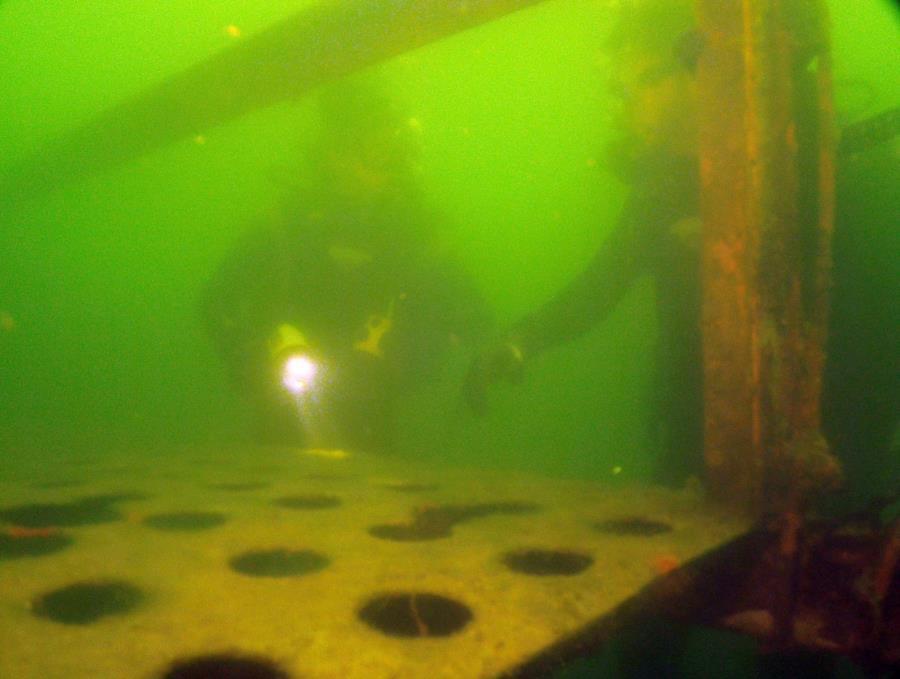 Twin Lakes Scuba Park - Twin Lakes Platform