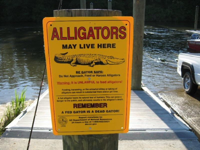 Cooper River - Cooper River Boat Ramp Sign
