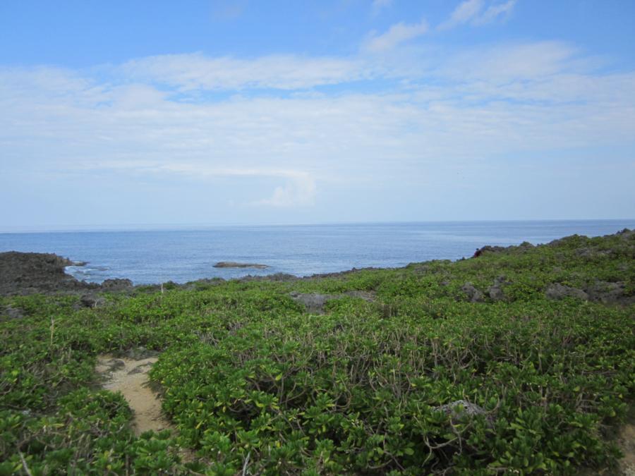 Bolo Pt (Zanpa-misaki) - View from top side