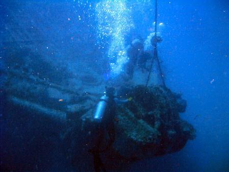 Wreck of the Cayman Salvager - Tiny Bubbles...